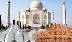 trip packages from delhi